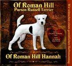 of Roman Hill Hannah