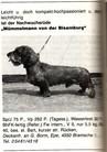 Mümmelmann von der Bisamburg