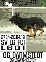 SV LG-FCI (LG01) 2019 - IGP 3