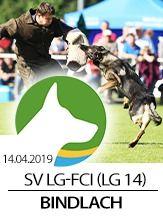SV LG-FCI (LG14) 2019 - IGP 3