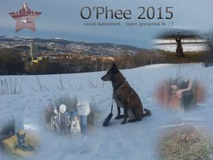 O'Phee vom Roten Milan