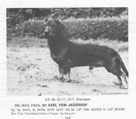 Axel vom Jägerhof