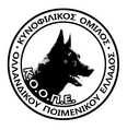 K.O.O.P.E. Mediterranean Dog Challenge Agility