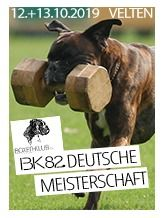 82. Deutsche Meisterschaft IGP - IGP 3