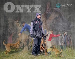 Onyx du Domaine de Louxor
