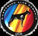 DCR Examen BH, IPO