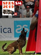 SKBS Schweizer Meisterschaft