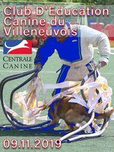Club D'Education Canine du Villeneuvois - Champ. Regional - Ring
