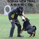 Goran vom Fuhrenblick