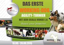 1. working-dog Agility Turnier Tag 2