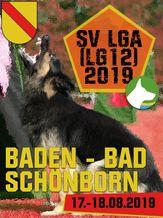 SV LGA (LG12) 2019 - IGP 3