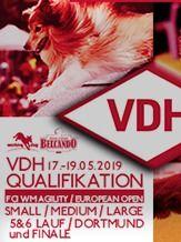 VDH  WM Qualifikation Agility