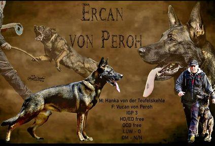 Ercan von Peroh