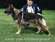 Xaver vom Höllbachgrund
