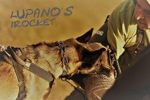Lupano's IRocket
