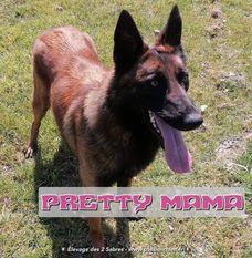 Pretty Mama des deux Sabres