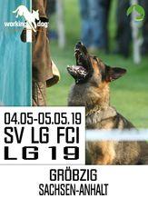SV LG-FCI (LG19) 2019 - IGP 3