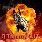 Q'Tommy Of Joli Troucheaus