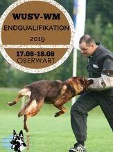 SVÖ-WUSV-WM Endqualifikation 2019 - IGP 3