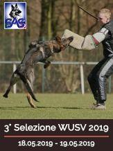 2019 3° Selezione WUSV 2019 - IGP 3