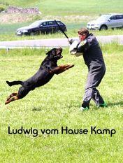 Ludwig vom Hause Kamp