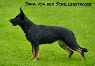 Inka von der Schillerstraße