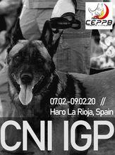 2020 CNI IGP 2020 CEPPB - IGP 3