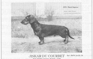 Jiskar du Courbet