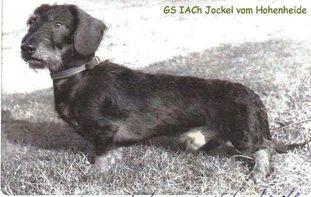 Jockel von Hohenheide