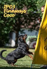 Finnways Coco