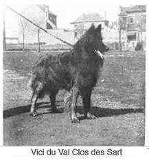 Vici du Val des Clos Sarts