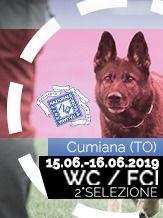 2019 2° Selezione WC FCI 2019 - IGP 3