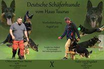 F - Wurf vom Haus Taurus