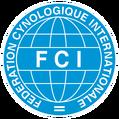 FCI Agility Junior European Open