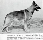 Orpal vom Stolzenfels