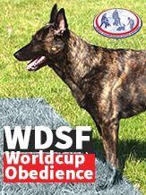 WDSF Dutch Shepherds Obedience