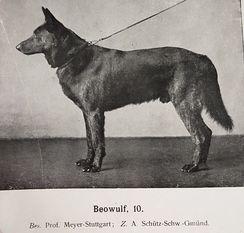 Beowulf SZ 10