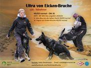 Ultra von Eicken-Bruche