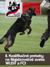ZŠK Majstrovstvá Slovenska