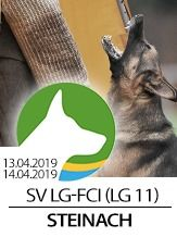 SV LG-FCI (LG11) 2019 - IGP 3