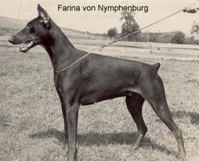 Farina von Nymphenburg