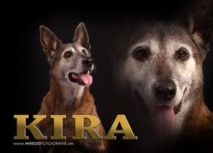 Kira (Rachner) (R)