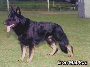Eron Mat-Roz CS