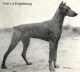 Troll von der Engelsburg