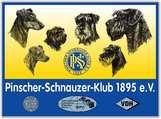 PSK FH Deutsche Meisterschaft