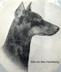 Rita von Bad Heidelberg