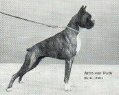 Aron von Puck