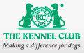 KC Kennel Club International Agility Festival