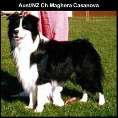 Maghera Casanova
