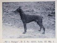 Alf vom Steiger